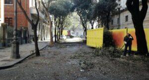 Torna il sole in via Laudamo: potati gli alberi accanto al Teatro